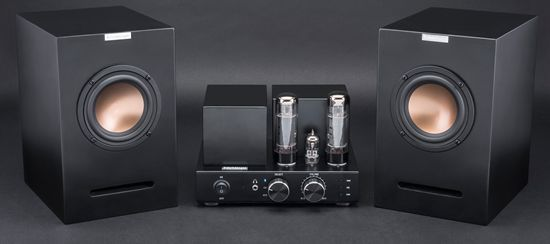 Schrödinger Audio High Performance Hifi Vacuum Tube Amplifier
